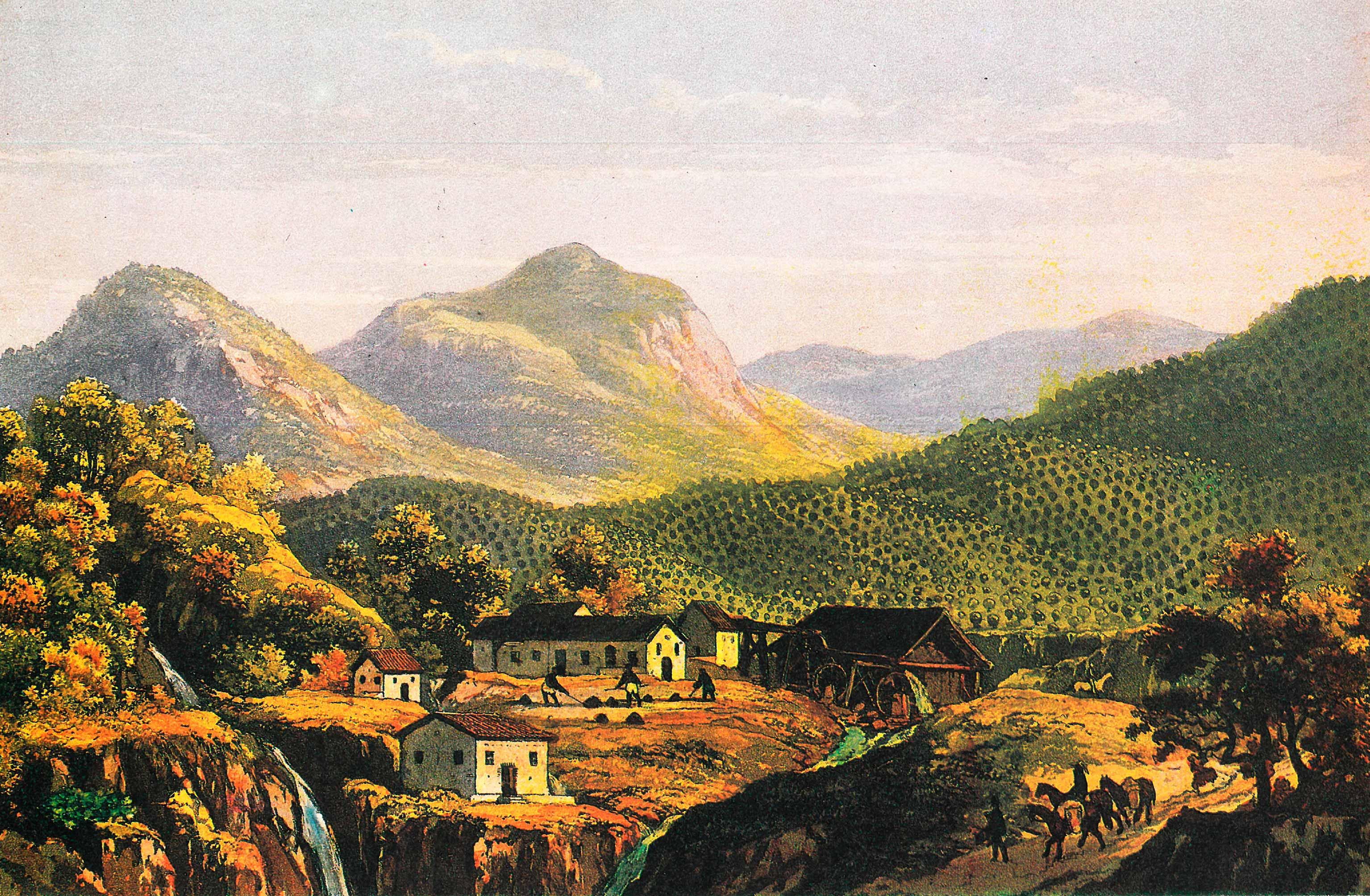 (2) Plantação de café. Johann Jacob Steinmann <br> Acervo da Fundação Biblioteca Nacional - Brasil